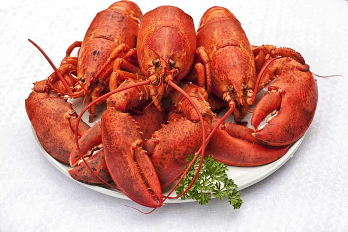 Mr.Crab Calabash Seafood Buffet in Myrtle Beach with Lobster