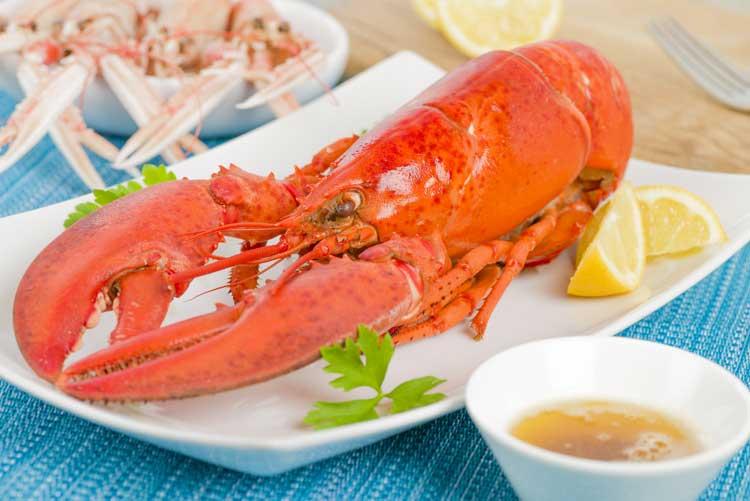 Lobster 0